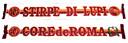 Sciarpa CdR stagione 2005-06