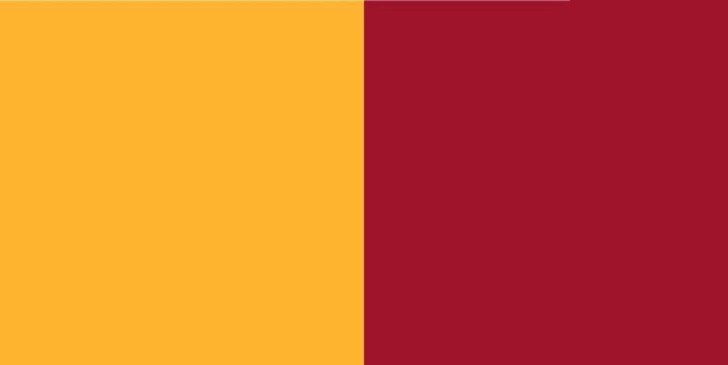 colori ufficiali ROMA